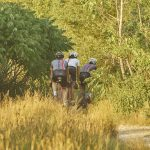 Mariposa Cycling Apparel